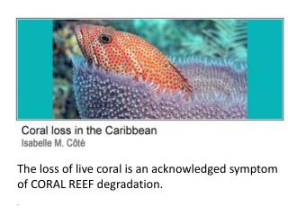 The loss of live coral is an acknowledged symptom of CORAL REEF degradation.  .
