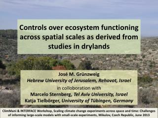 Controls over ecosystem functioning across  spatial  scales as derived from studies in drylands