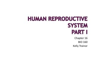 Human Reproductive System Part I