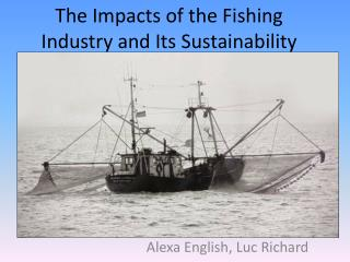 The Impacts of the Fishing Industry and Its Sustainability