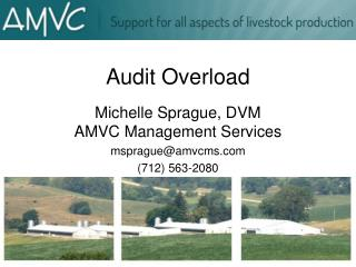 Audit Overload
