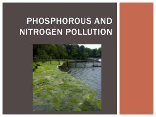 Phosphorous and Nitrogen Pollution