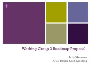 Working Group  3  Roadmap Proposal