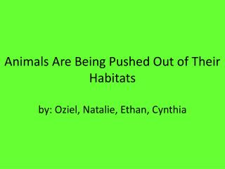 Animals Are Being Pushed Out of  Their Habitats by:  Oziel , Natalie, Ethan, Cynthia