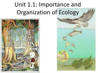 Unit 1.1: Importance and Organization of Ecology