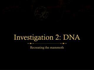 Investigation 2: DNA