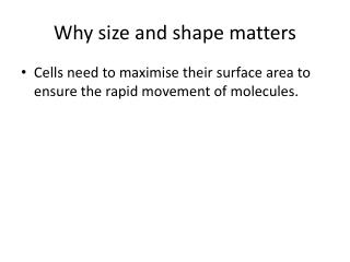 Why size and shape matters
