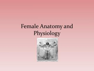 Female Anatomy and Physiology