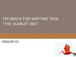 "Feedback for writing task ""The scarlet ibis"""
