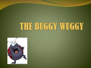THE BUGGY WUGGY