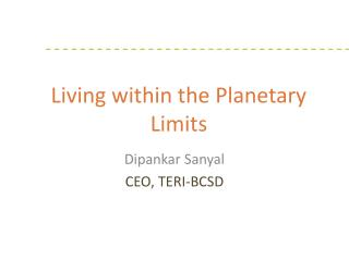 Living within the  Planetary Limits