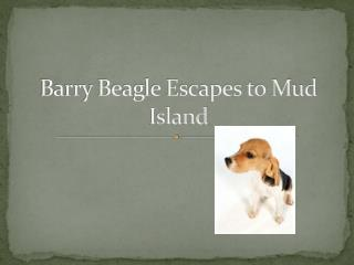 Barry Beagle Escapes to Mud Island