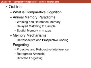 Chapter 11 – Comparative Cognition 1: Memory Mechanisms