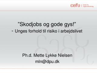 """"""" Skodjobs  og gode gys!""""  -  Unges forhold til risiko i arbejdslivet"""