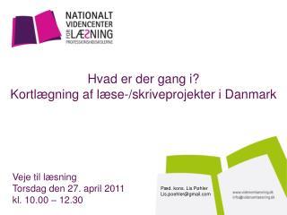 Hvad er der gang i? Kortlægning af læse-/skriveprojekter i Danmark