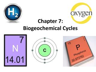 Chapter 7: Biogeochemical Cycles