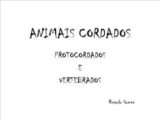 ANIMAIS CORDADOS