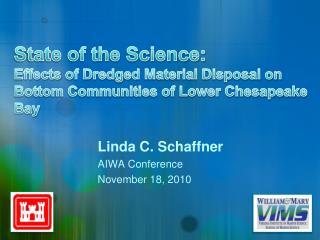 Linda C. Schaffner AIWA Conference November 18, 2010