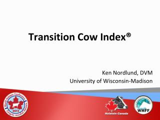 Transition Cow Index®