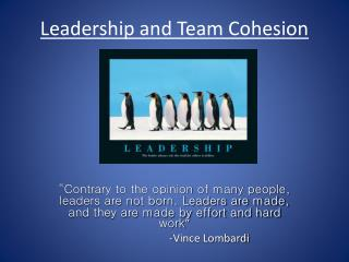 Leadership and Team Cohesion