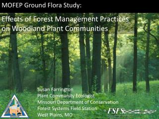 MOFEP Ground Flora Study: Effects of Forest Management Practices on Woodland Plant Communities