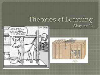 Theories of Learning Chapter 10