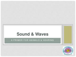 Sound & Waves