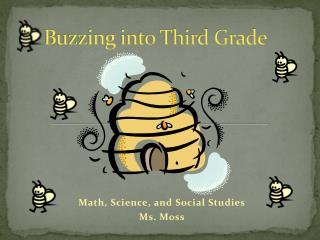 Buzzing into Third Grade