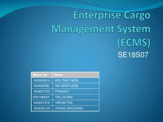 Enterprise Cargo Management System (ECMS)