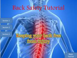 Back Safety Tutorial