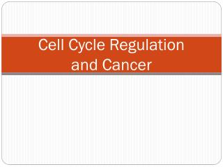 Cell Cycle Regulation  and Cancer
