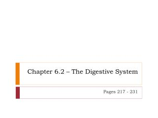 Chapter 6.2 – The Digestive System