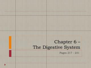 Chapter 6 –  The Digestive System