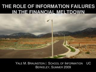 THE ROLE OF INFORMATION FAILURES IN THE FINANCIAL MELTDOWN