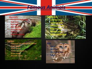 Famous Animals