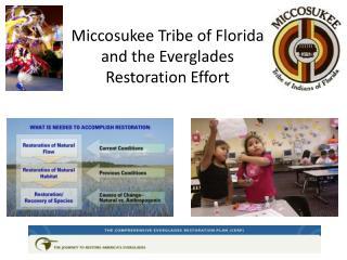 Miccosukee Tribe of Florida and the Everglades Restoration Effort