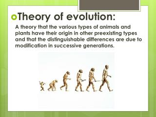Theory of evolution: