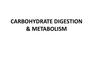 CARBOHYDRATE  DIGESTION &  METABOLISM