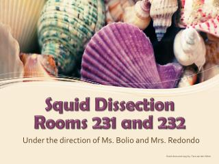 Squid Dissection Rooms 231 and 232