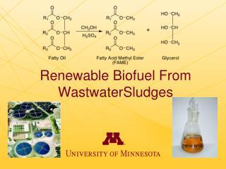Renewable  Biofuel  From  WastwaterSludges