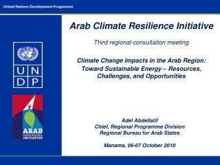 Adel Abdellatif Chief, Regional Programme Division Regional Bureau for Arab States