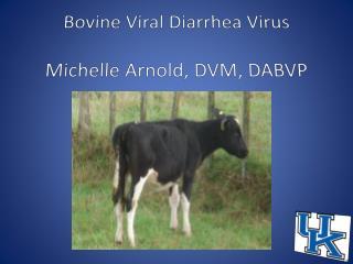 Bovine Viral  Diarrhea  Virus Michelle Arnold, DVM, DABVP