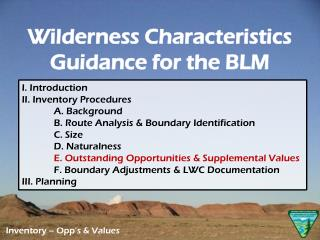I. Introduction  II. Inventory Procedures A. Background