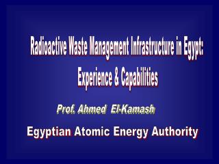 Radioactive  Waste Management Infrastructure in  Egypt:  Experience & Capabilities