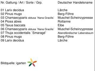 Nr. Gattung / Art / Sorte /  Grp .  Deutscher Handelsname 01  Larix decidua Lärche