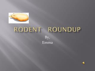 Rodent   Roundup