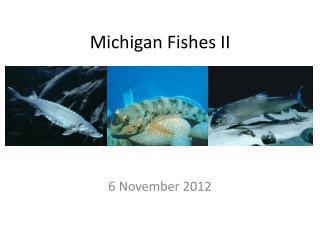 Michigan Fishes II