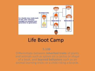 Life Boot Camp