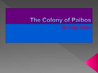 The Colony of Paibos