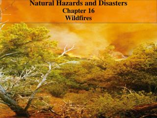Natural Hazards and Disasters Chapter 16  Wildfires